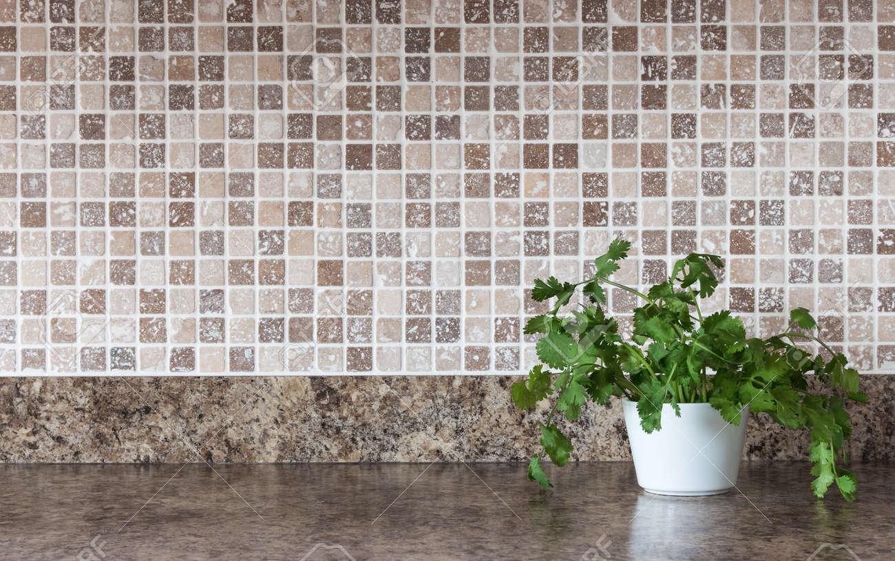17045055 White pot with green herbs on kitchen countertop Stock Photo backsplash