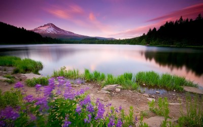 14 Awesome Nature & Landscape Wallpapers - Project 4 Gallery