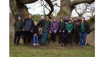 Pioneering tree health partnership to continue thanks to funding boost