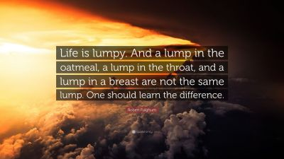 """Robert Fulghum Quote: """"Life is lumpy. And a lump in the oatmeal, a lump in the throat, and a ..."""