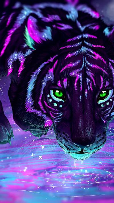 Tiger : wallpapers