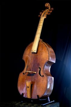 1000+ ideas about Viola Da Gamba on Pinterest | Violin, Viola and Lute