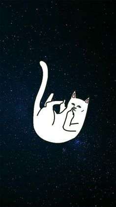 Ripndip Cat | Wallpaper | Pinterest