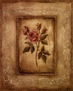 1000+ images about Victorian Rose Wallpaper Border on Pinterest | Rose wallpaper, Wallpaper ...