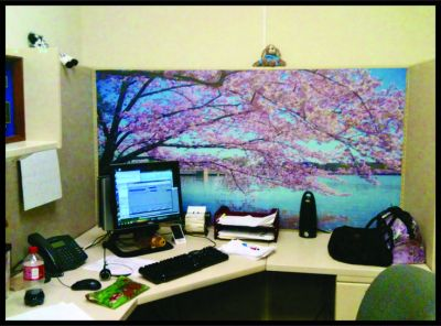 Cubicles, Office art and Art ideas on Pinterest