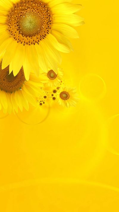 1000+ ideas about Iphone Wallpaper Yellow on Pinterest | Screensaver, Phone wallpapers and Phone ...