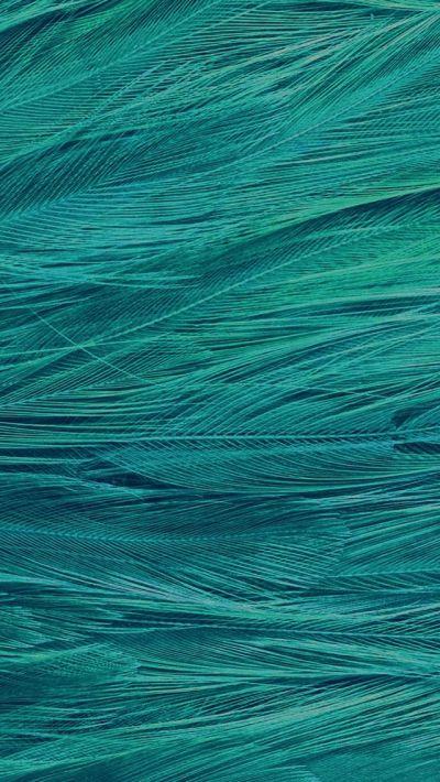 Feather Blue Bird Pattern #iPhone #5s #wallpaper | iPhone 5(s) Wallpapers | Pinterest | Iphone ...