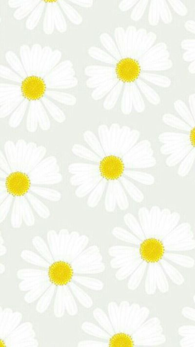 25+ best ideas about Daisy wallpaper on Pinterest | Screensaver, Gerbera daisy colors and Flower ...