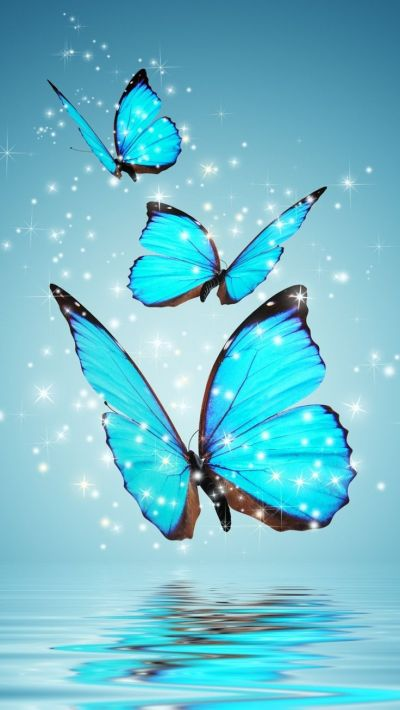 Best 25+ Butterfly wallpaper ideas on Pinterest | Cool ...