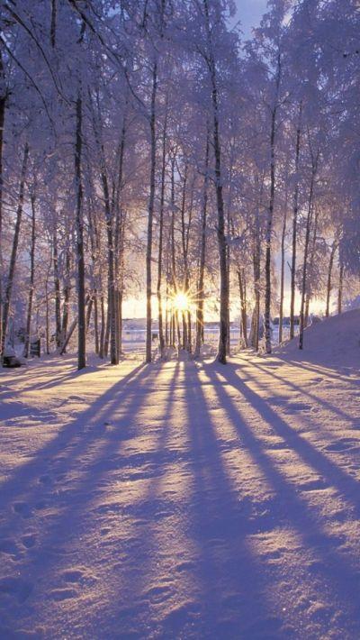 25+ best ideas about Winter Wallpapers on Pinterest | Phone wallpaper cute, Winter screensavers ...