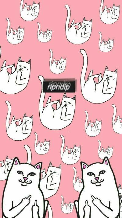 866 best wallpaper for phone♡ images on Pinterest