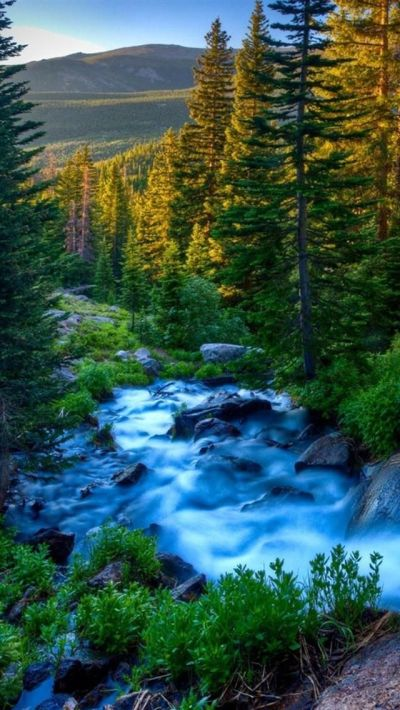 iphone-5-wallpapers-hd-2818-gjdho.jpg (640×1136) | Nature Wallpaper | Pinterest | Beautiful ...