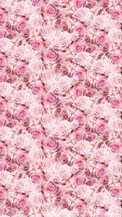 Pink Iphone Wallpaper Tumblr | Pink Wallpapers | Pinterest | Pink roses, iPhone wallpapers and Roses