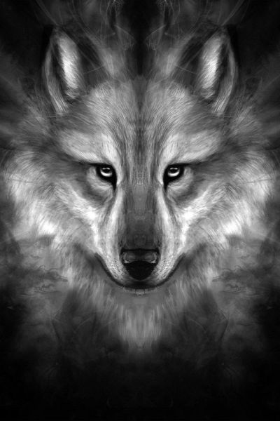 FreeiOS7 | wolf-face-story-center | freeios7.com | iPhone iPad parallax wallpaper | Pinterest ...
