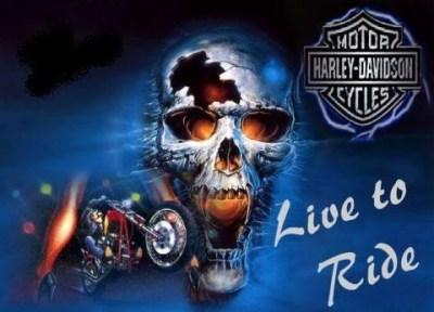 HARLEY DAVIDSON - LIVE TO RIDE | SKULLS ♥ | Pinterest | Harley davidson
