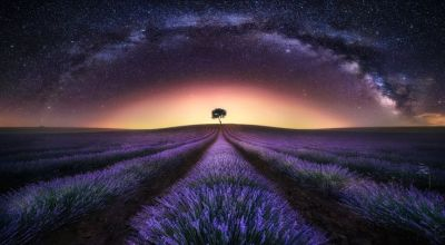 Photograph Lavender Field & Milky Way I by Jesús M. García © on 500px | Art and Photography ...