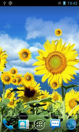 Sunflower Live Wallpaper   Android Live Wallpaper Gallery   Books Worth Reading   Pinterest ...
