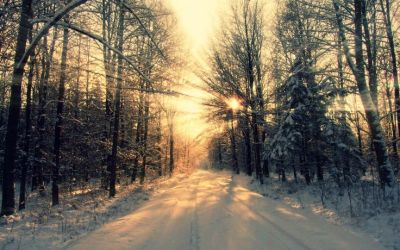 Winter Wallpaper Tumblr   snow time ♥   Pinterest   Winter wallpaper, Pictures and Tumblr