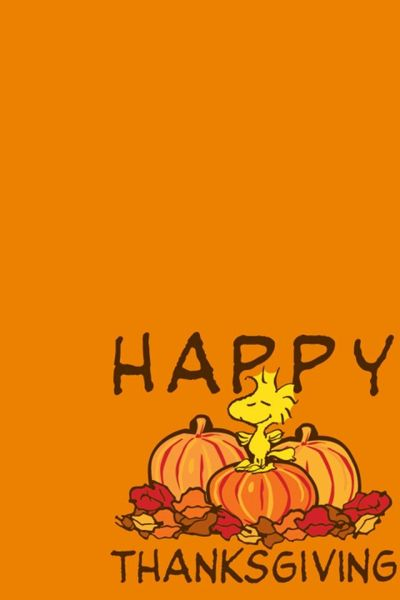 thanksgiving wallpapers | Snoopy Happy Thanksgiving iPhone 4 Wallpaper and iPhone 4S Wallpaper ...
