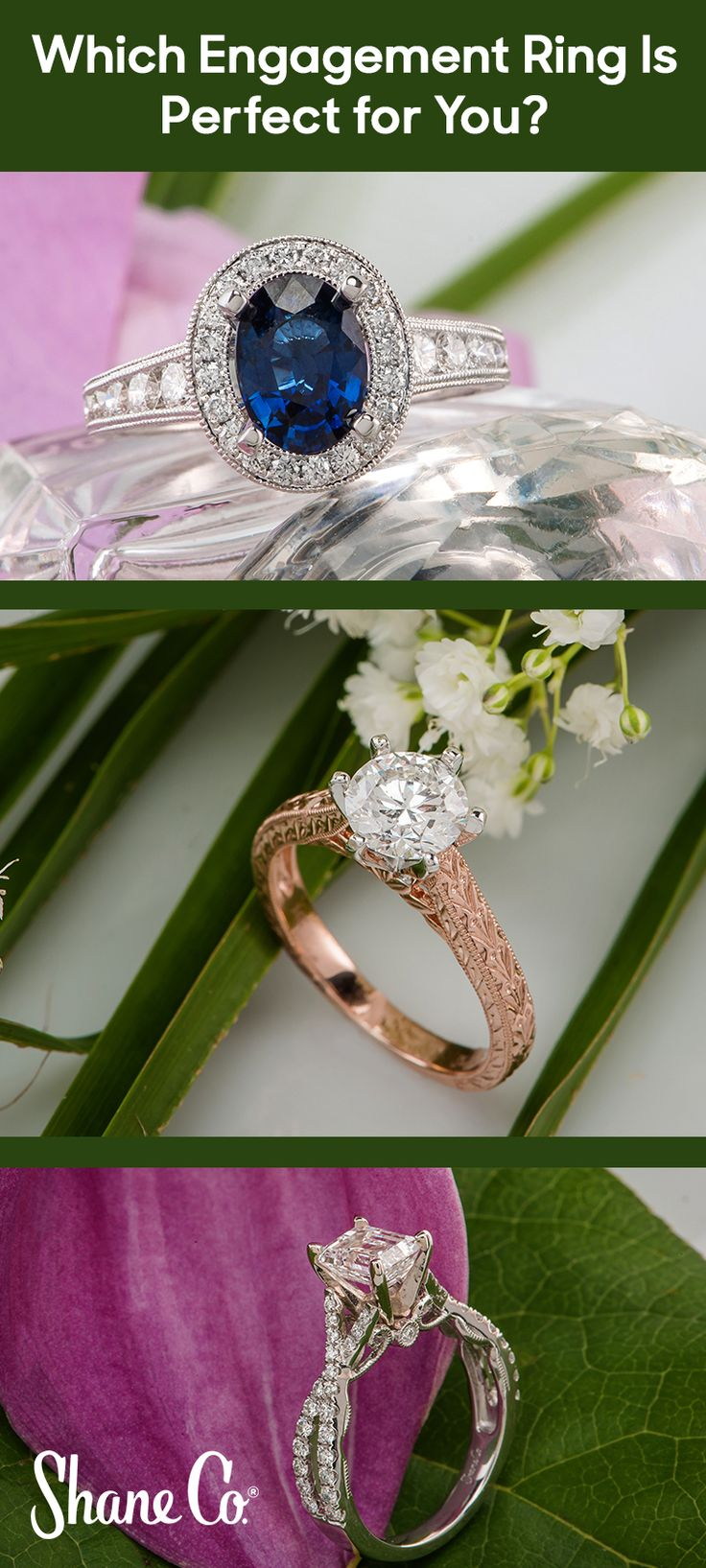 ring a bling shane company wedding bands Browse hundreds of exclusive engagement ring designs all backed by our Free Lifetime Warranty Explore engagement rings from Shane Co