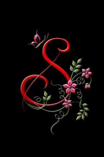 3152 best images about Illuminated letters on Pinterest   Initials, Drop cap and Prayer book