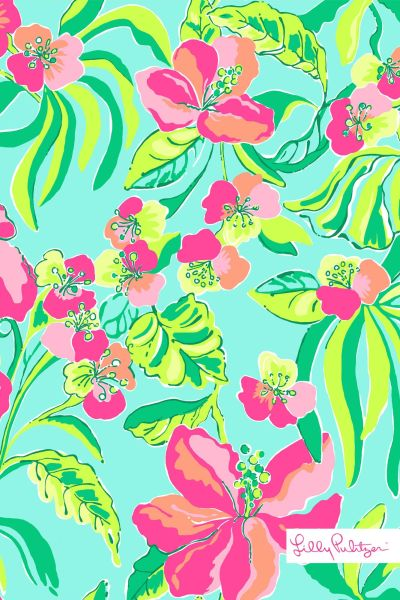 Lily Pulitzer Wallpaper on Pinterest | Lily Pulitzer, Lily Pulitzer Painting and Lily Pulitzer ...