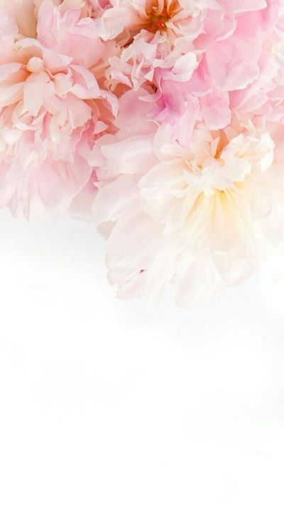 pinterest | ♡ ᒪOVEANDLOUBS ♡•• | W A L L P A P E R S | Pinterest | Wallpaper, Phone and Flowers