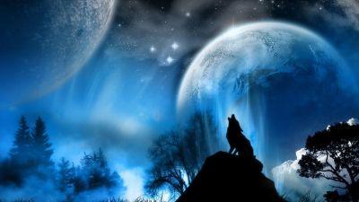 Full HD p Wolf Wallpapers HD, Desktop Backgrounds 1920×1080 Wolf Backgrounds (33 Wallpapers ...