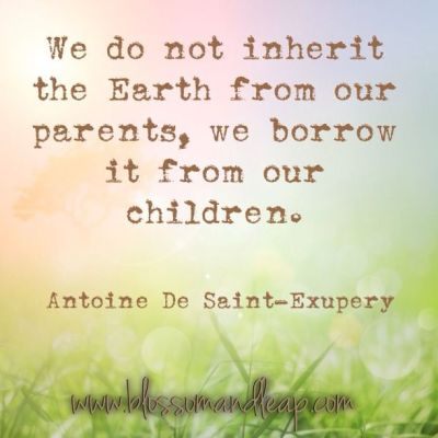 #quote | # Antoine De Saint-Exupery | We do not inherit the earth from our parents, we borrow it ...