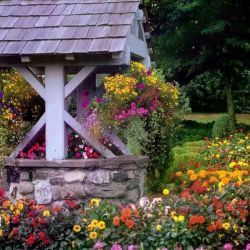 Flower Bed Garden Style Pinterest Flower Gardens and Flowers