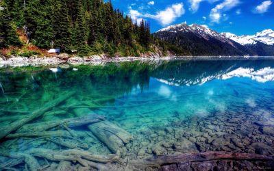 4k Nature Wallpapers For Iphone ~ Sdeerwallpaper | Pozadia | Pinterest | Nature wallpaper