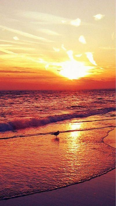 Nature-Sunset-Beach-Landscape-iphone-6-wallpaper-www ...