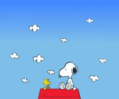 snoopy wallpaper - Buscar con Google | Snoopy | Pinterest | Snoopy, Snoopy cartoon and Snoopy comics