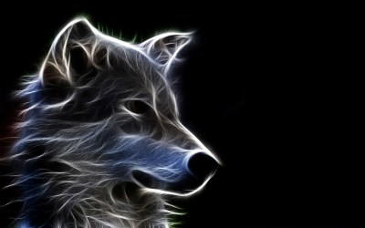Wolf Wallpapers | Best Wallpapers