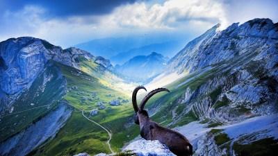 Switzerland Wallpapers | Best Wallpapers