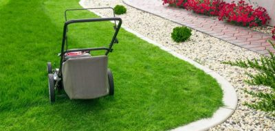 Best Time to Mow Your Lawn | Bottom Line Inc