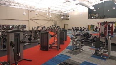 Life Fitness Insignia Series Line Equipment - Yelp