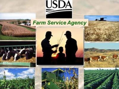 Becoming an FSA Guaranteed Lender - ppt download