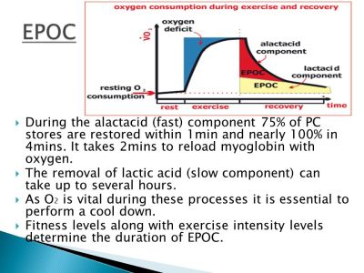 Aerobic Energy Systems - ppt video online download