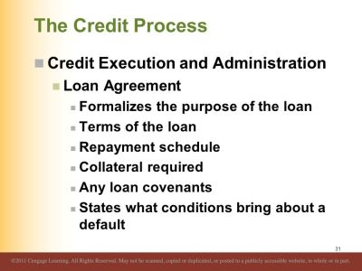 Overview of Credit Policy and Loan Characteristics - ppt download