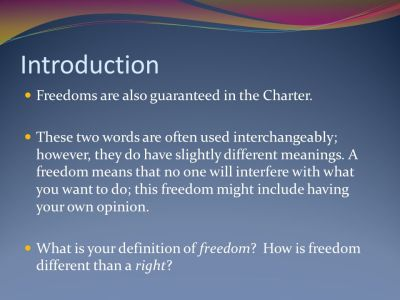 Chapter 3: How effectively does Canada's Charter of Rights and Freedoms protect your individual ...