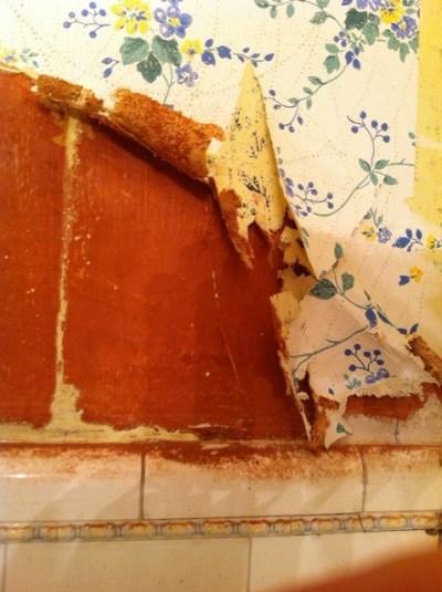 Asbestos glue under my wallpaper?
