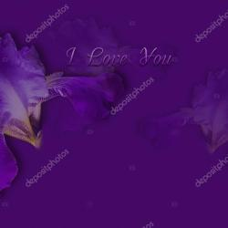 Greeting Card With I Love You on the Background of Purple Iris