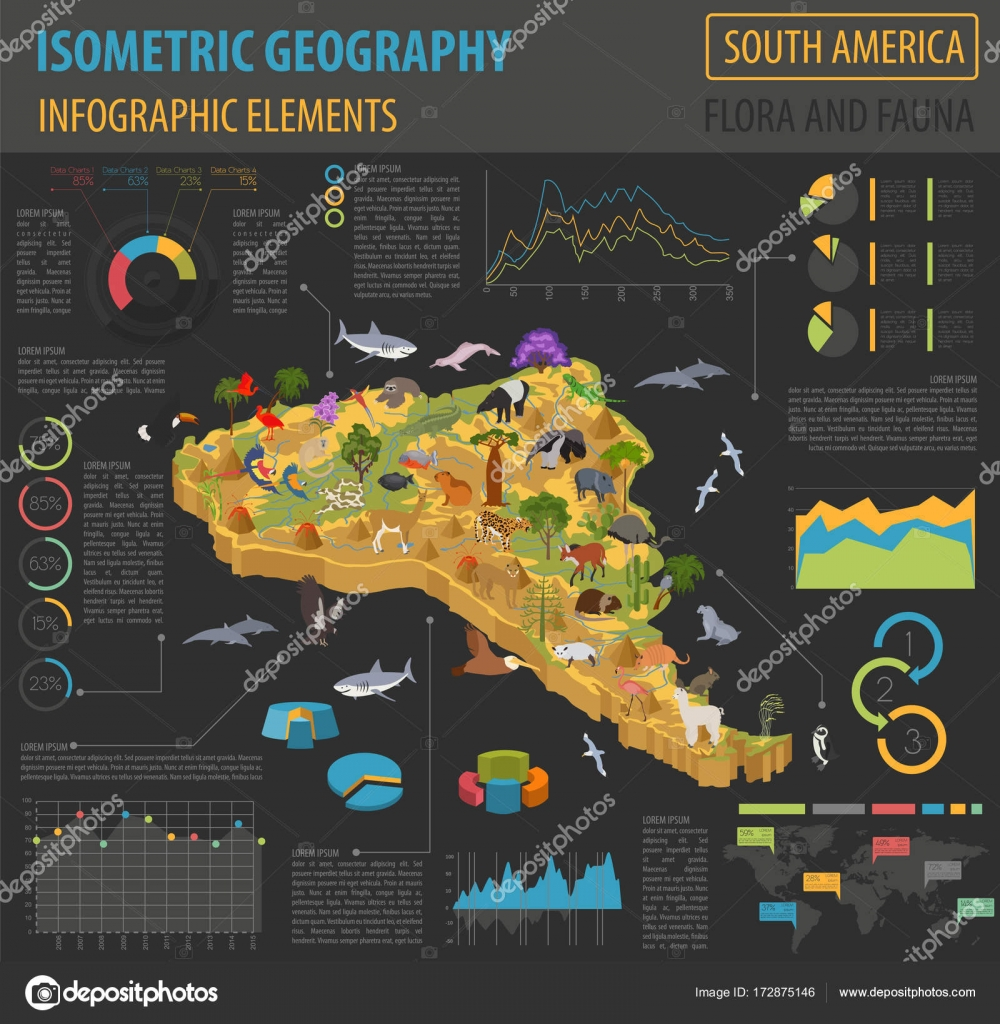 Isometric 3d South America flora and fauna map elements  Animals     Isometric 3d South America flora and fauna map elements  Animals     Stock  Vector