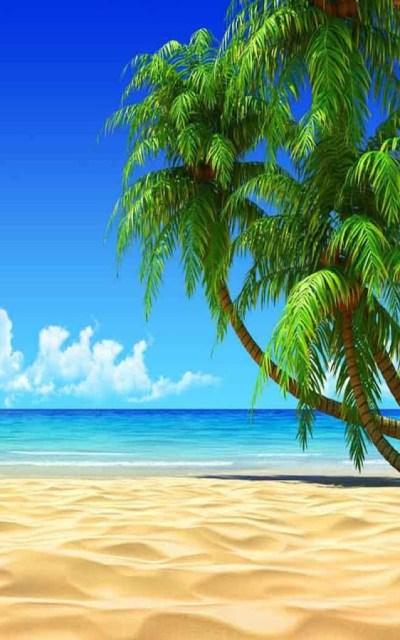 Beach Live Wallpaper App Ranking and Store Data | App Annie