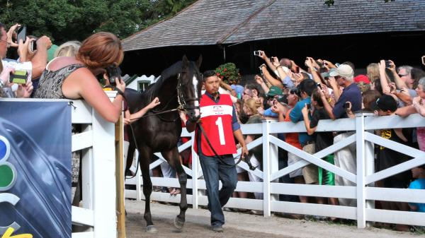 Saratoga Must-Follows | America's Best Racing