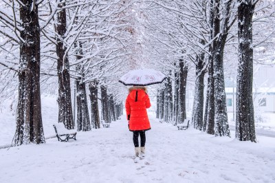 7 Tips for Taking Photographs in the Snow | B&H Explora