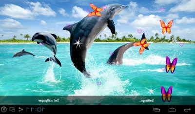 Free 3D Dolphin Live Wallpapers APK Download For Android | GetJar