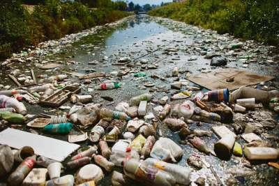 Plastic op het menu - NRC Handelsblad van zaterdag 8 juni 2013