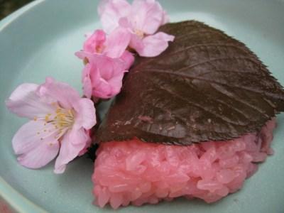 Sakura Mochi (Cherry Blossom Rice Cake)   Tasty Kitchen: A Happy Recipe Community!